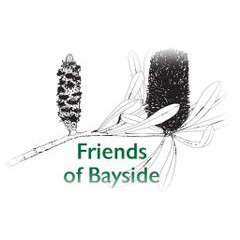 Friends of Bayside