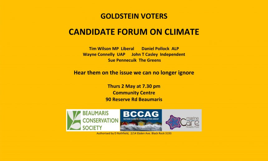 Goldstein: Candidates Forum on Climate policy