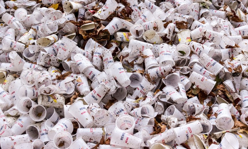 Single-use plastics associated with council premises