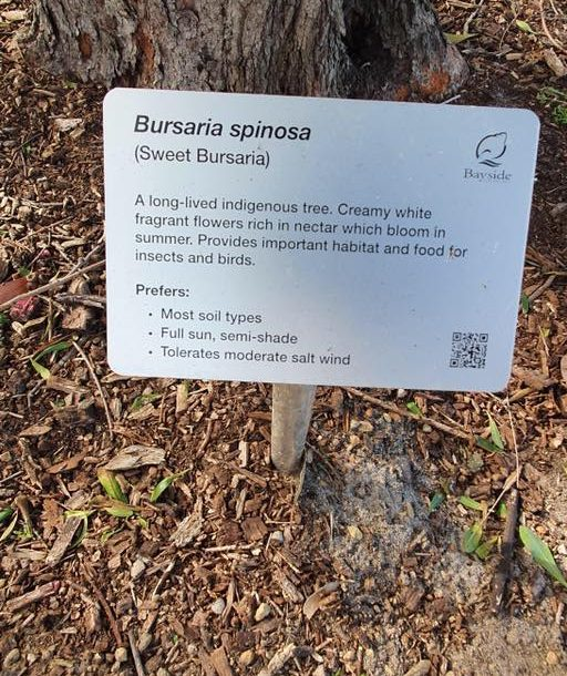 Tree identification signs now in Beaumaris Reserve