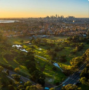 Bayside Council – Draft Urban Forest Strategy